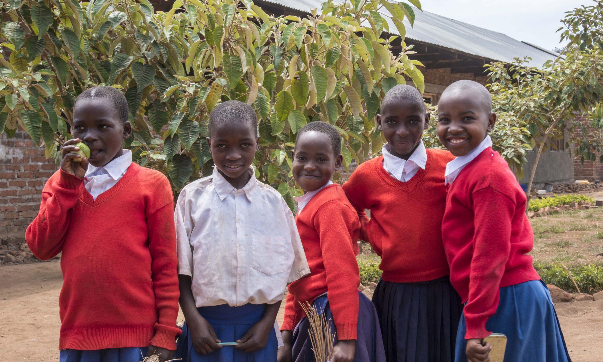 Africa Bridge Blog